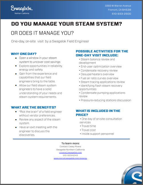 A Day with a Swagelok Energy Advisor Can Give Your Steam System a Boost