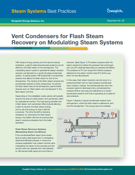 industrial steam system