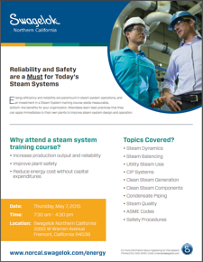 steam system training