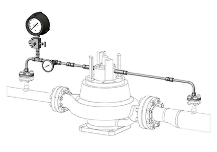 Process Side Mechanical Seal Support Flushing