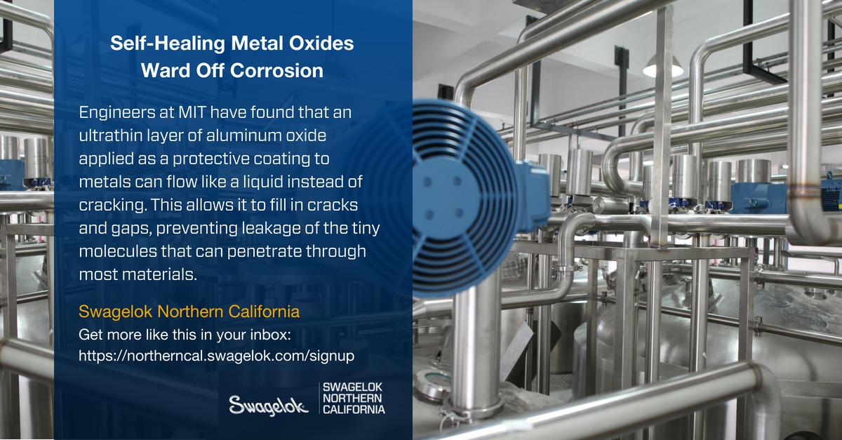 Self-Healing Metal Oxides Ward Off Corrosion